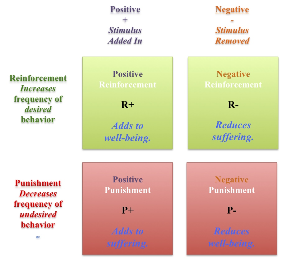 A Positive-Minded Primer on Punishment and Reinforcement-with a ...
