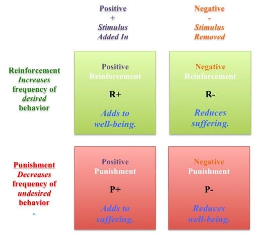 Positive Reinforcement Matrix Buddhist style for blog jpg