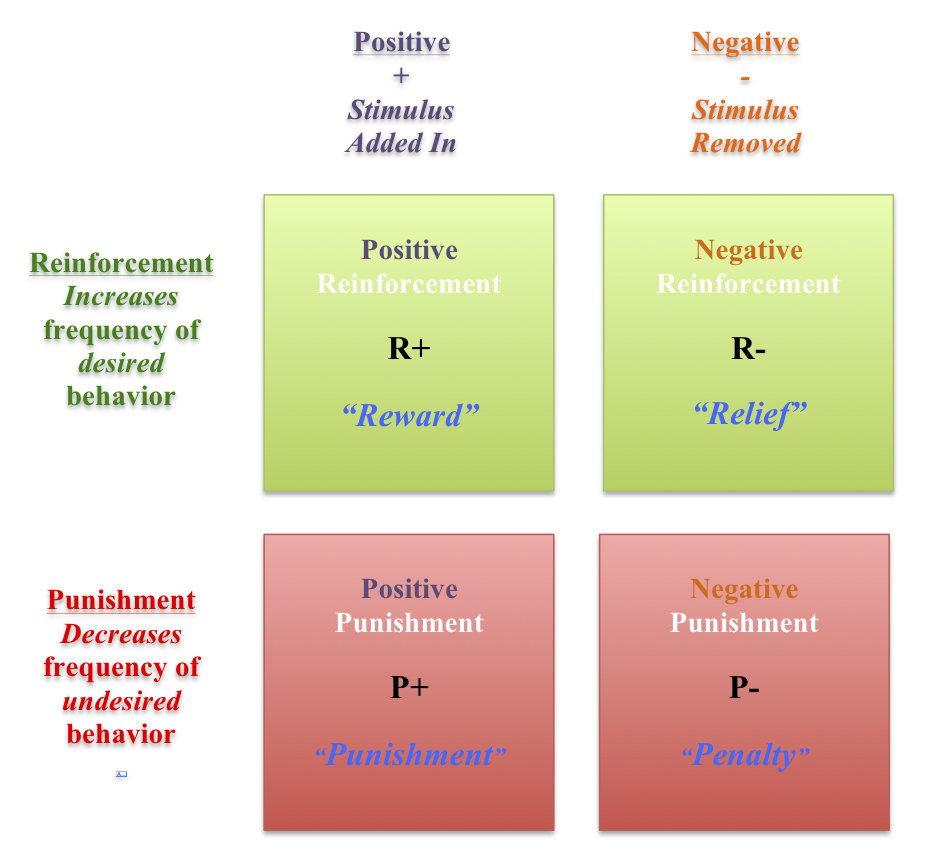operant conditioning and reinforcement theories In this lesson, you will learn about reinforcement theory as it applies to the  workplace  the technical term for these processes is called operant  conditioning.