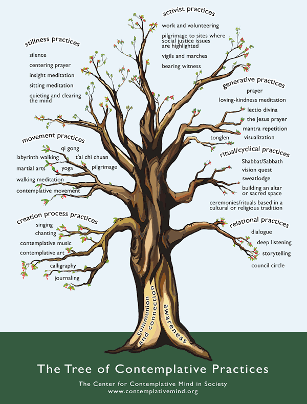 One can find many paths inward on the tree of contemplative practices.