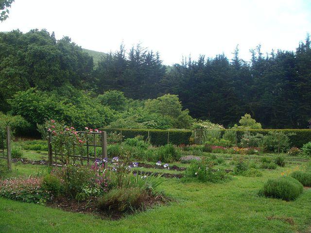 Gardens at Green Gulch.