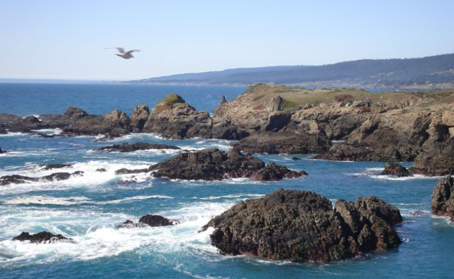 The Sonoma Coast, 30 minutes from the retreat center.