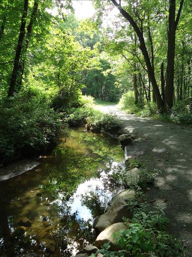 The improv path moves right alongside deeper streams. Photo courtesy of Wikimedia.org.