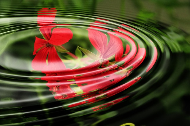 Mindfulness can bring ripples of benefit to any classroom or workplace setting.  Image courtesy of Pixabay.