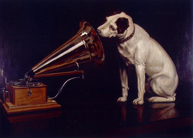 This dog knows how to make the phonograph feel heard. Good deep listening, pooch. Image courtesy of Wikipedia.